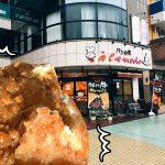 【あきる野】本場キーマカレーがぎっしり!カレーパン協会グランプリ最高金賞を獲得したカレーパンを食す!